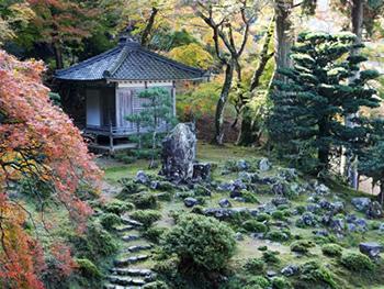 Ganz und zu Extrem Japanische Gärten, Chinesische Gärten @NT_93